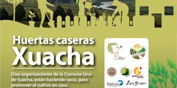 HUERTAS CASERAS XUACHA